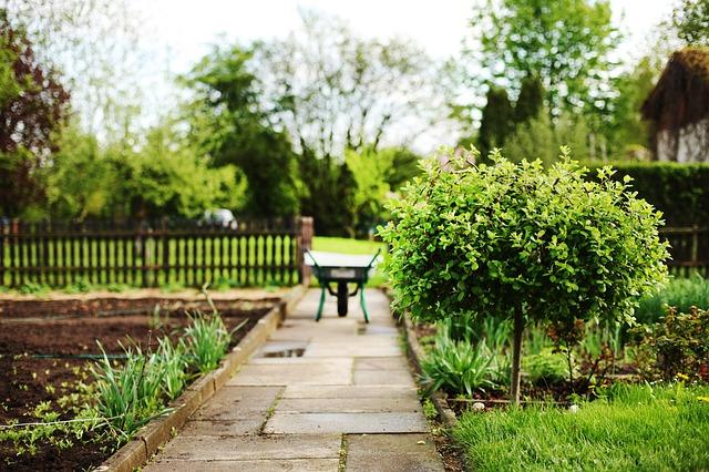 愛ある家庭菜園のあるお家